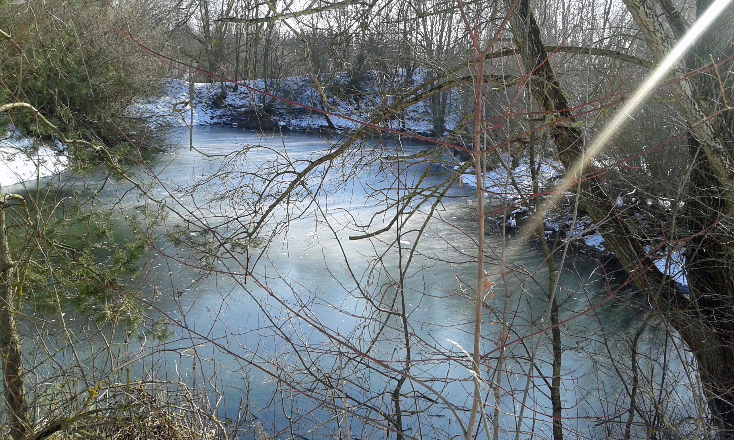 winterweiher9