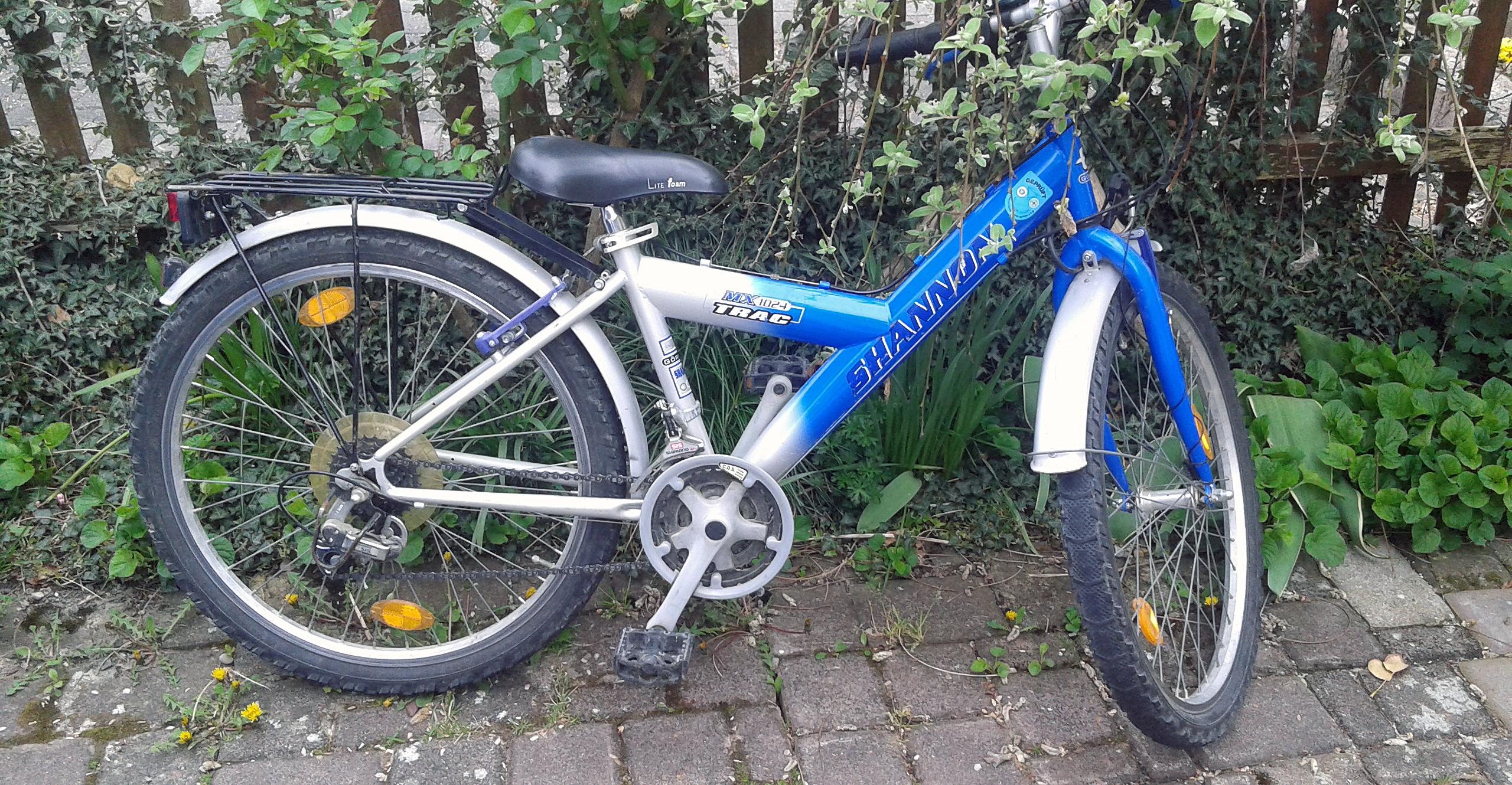 benno-bike