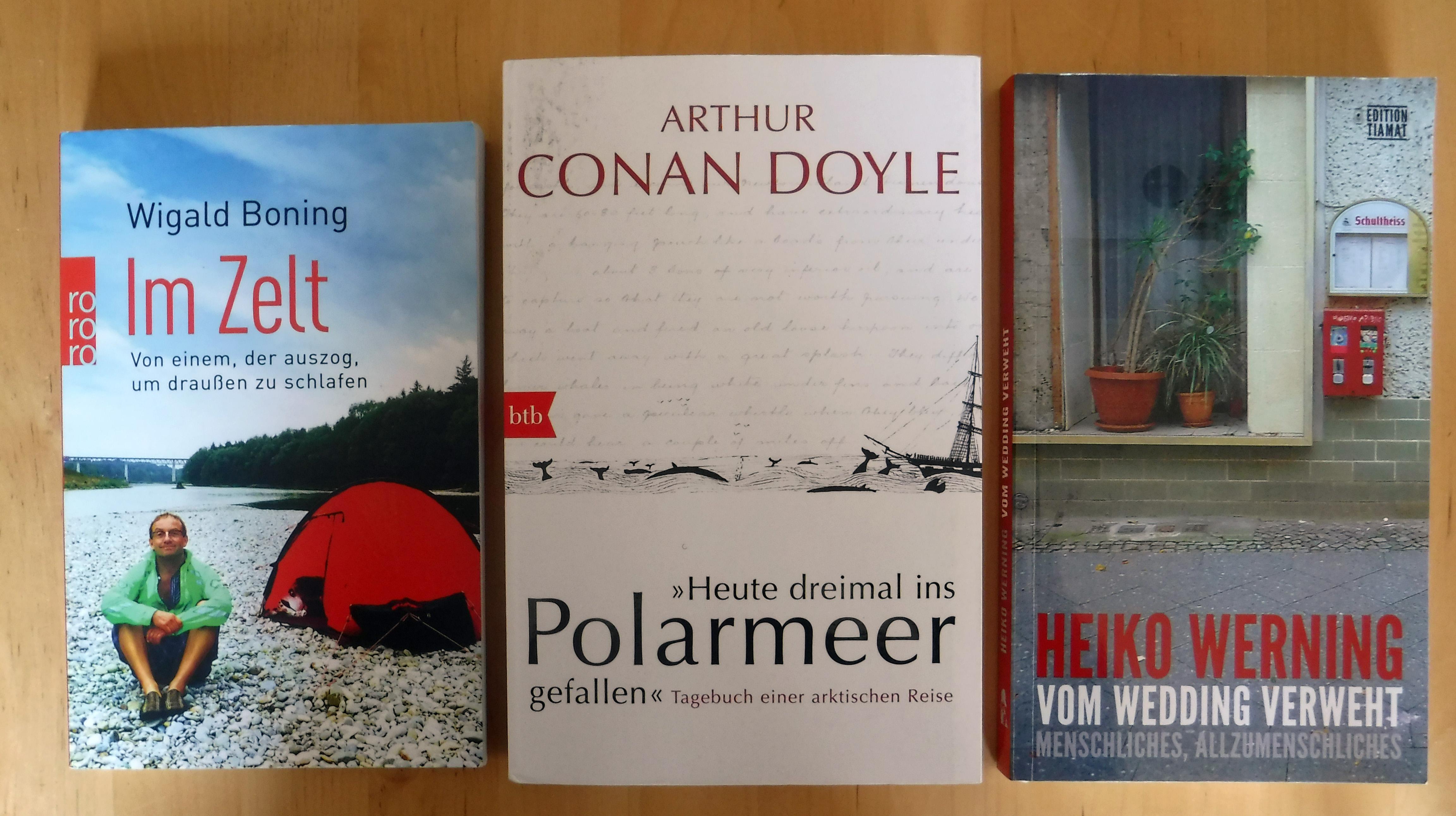 Buchbeginn bei Boning, Doyle und Werning