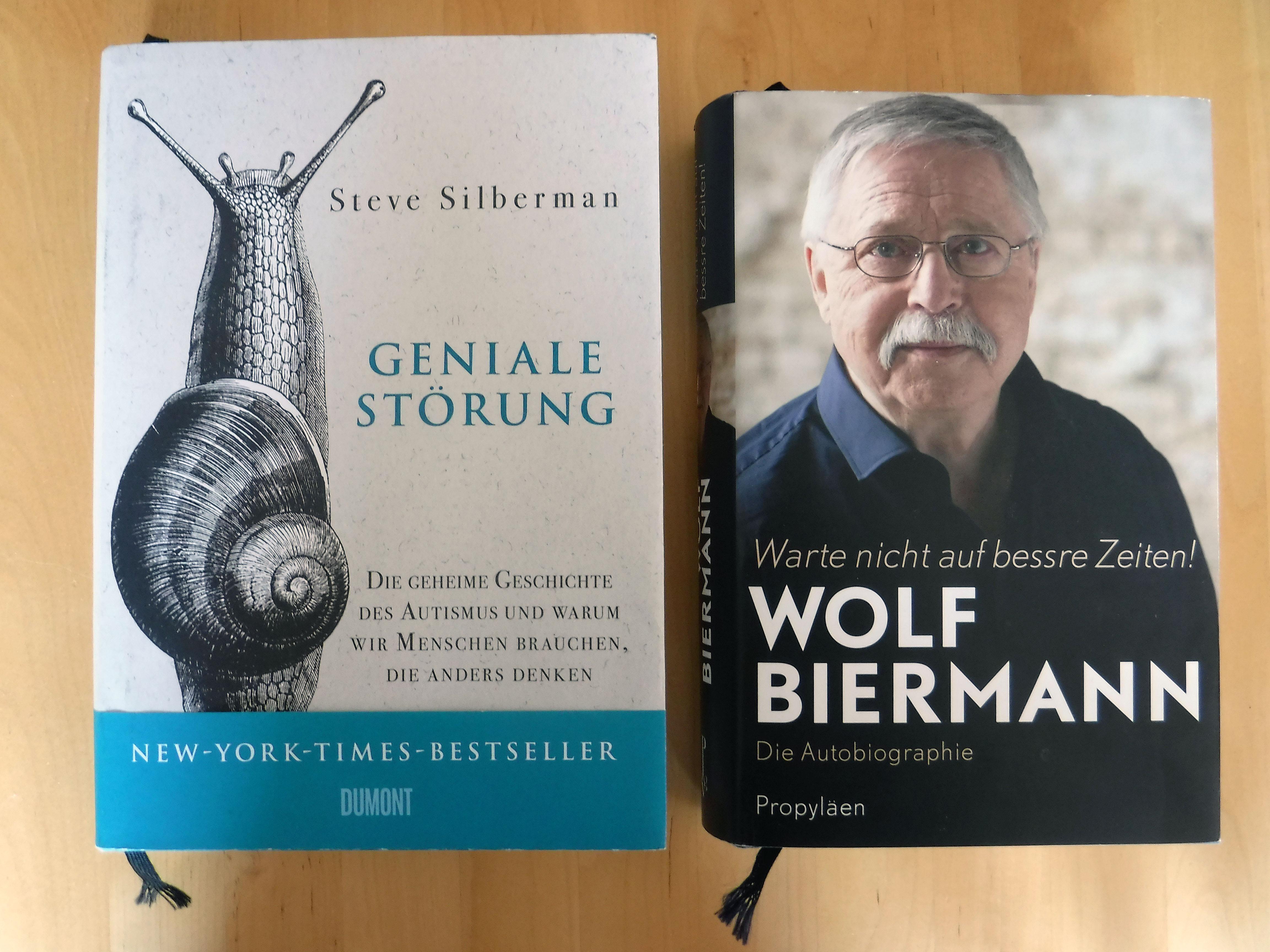 Buchbeginn bei Silberman und Biermann