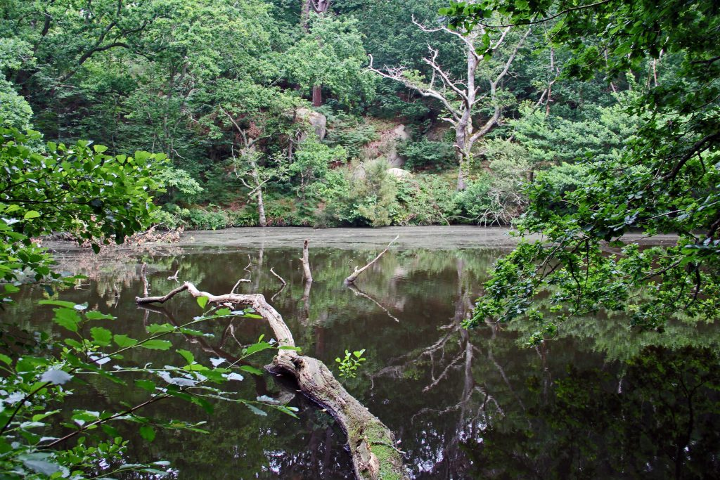 Das Vallée des Grands Traouïero - Teich