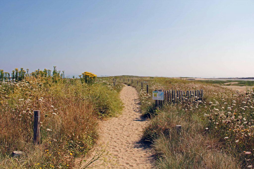 Sillon de Talbert - Ein Weg durch die Dünen