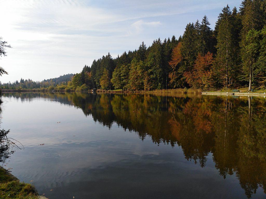 Deininger Weiher - still ruht der See