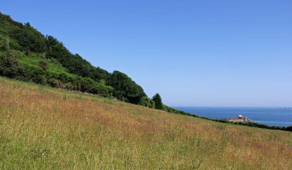 Grüne Felder und kleine Wälder, blauer Himmel, blaues Meer