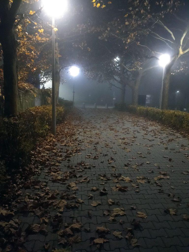 November, Nebel, Nächte - hinein ins wohlige Gruseln