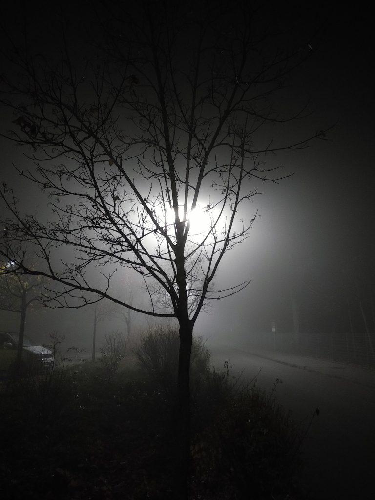 November, Nebel, Nächte - fahles Licht der Laternen