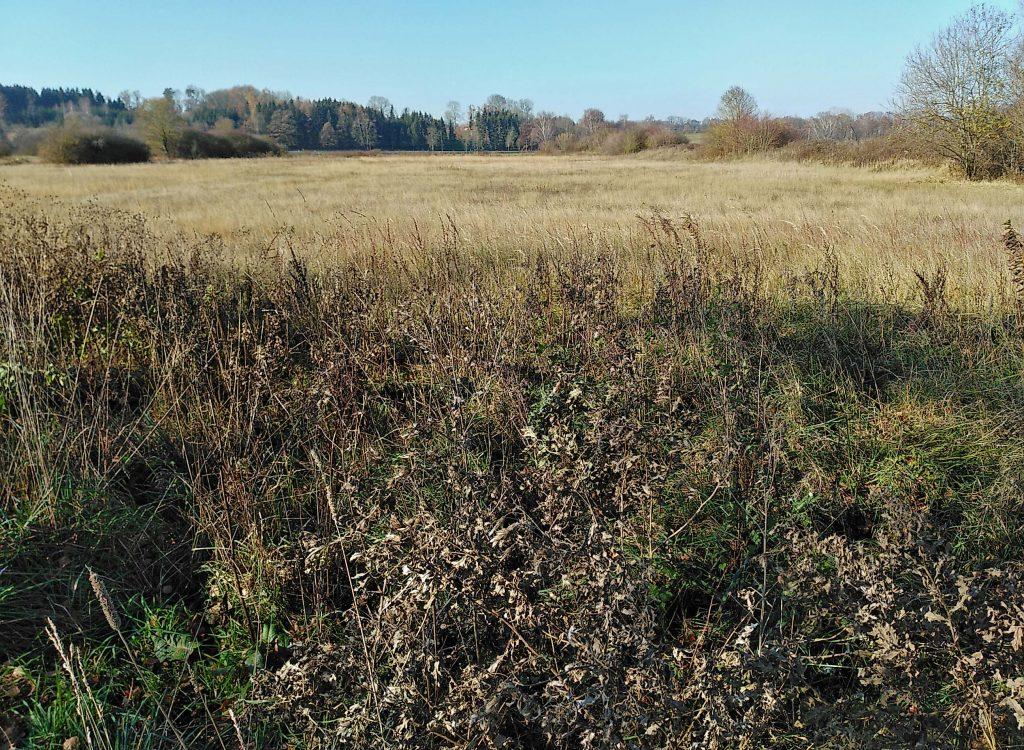 Im Tal der Sempt - Felder im Herbst