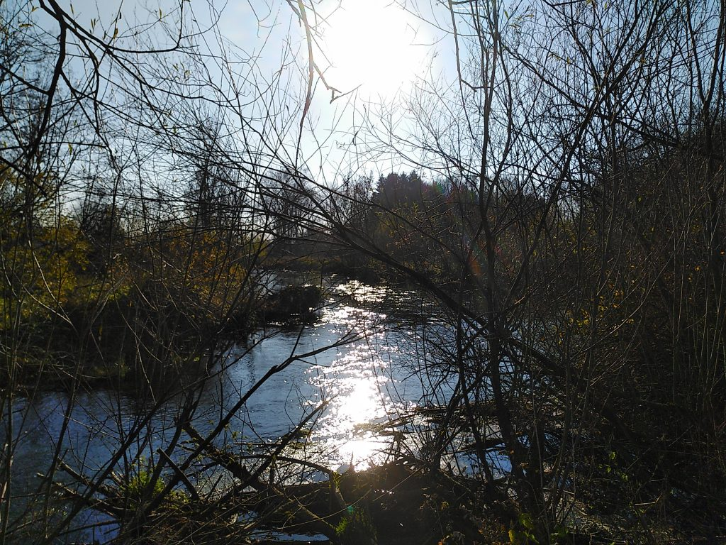 Die Sempt reflektiert die Sonne
