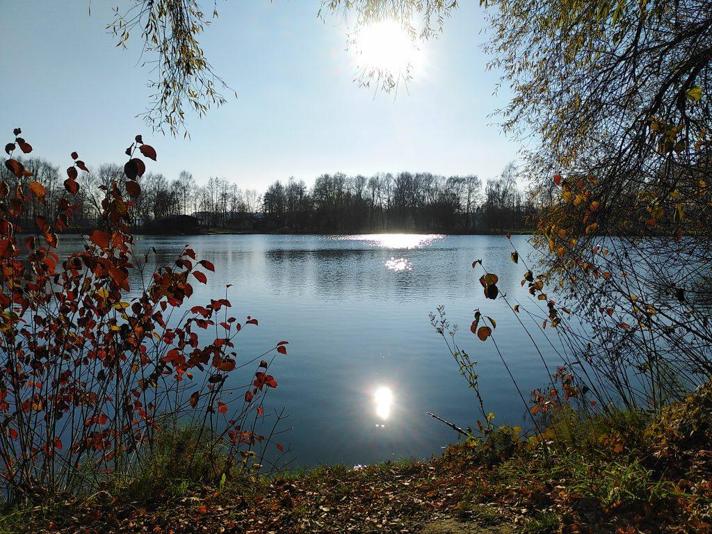 Novembersonne am Wörther Weiher