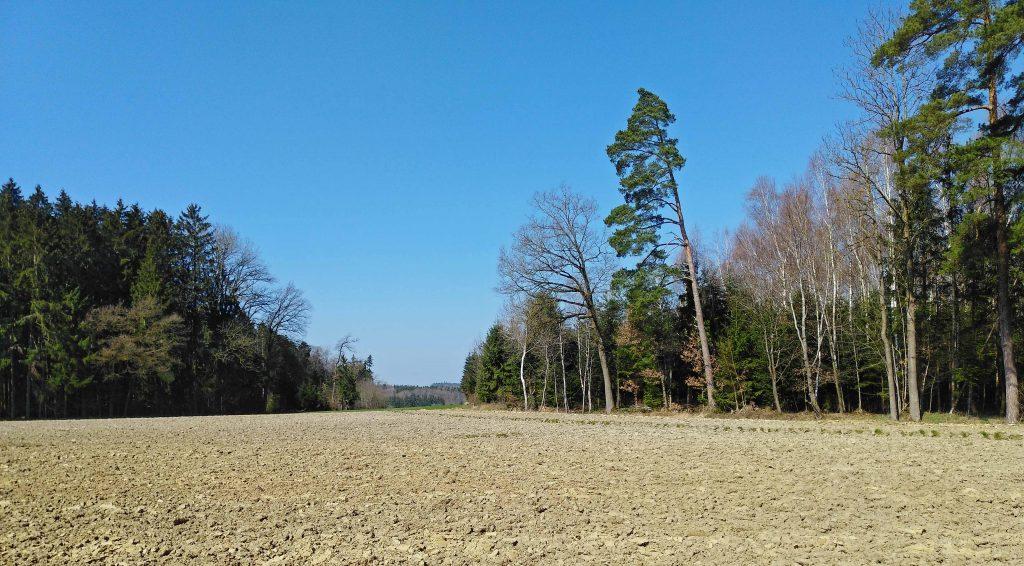 Auf dem Jakobsweg - gepflügtes Feld