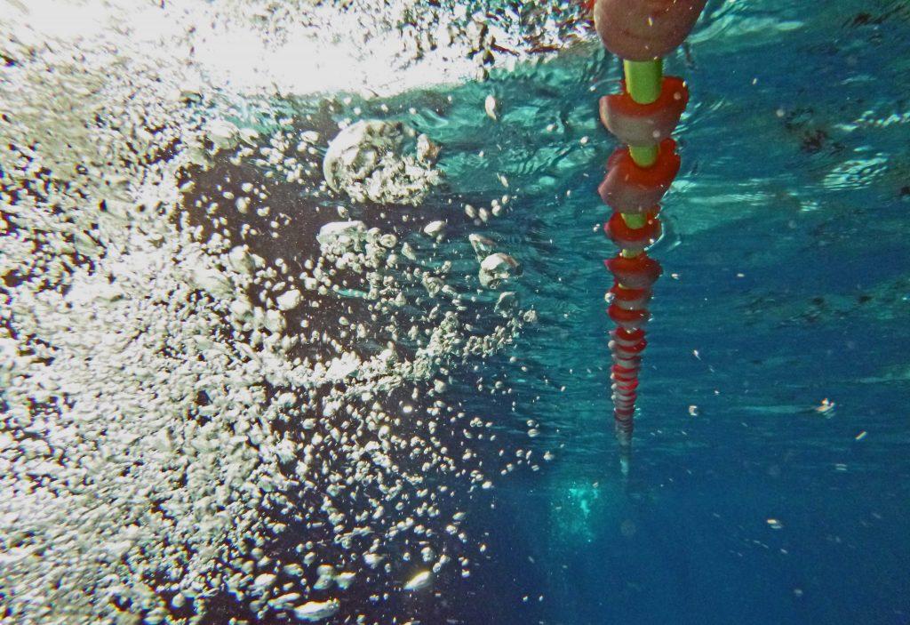Schwimmbad Leine von unten