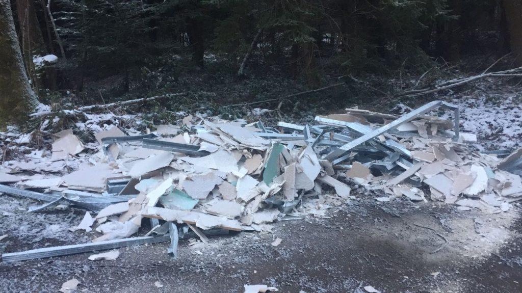 Müll und Schutt im heimischen Wald