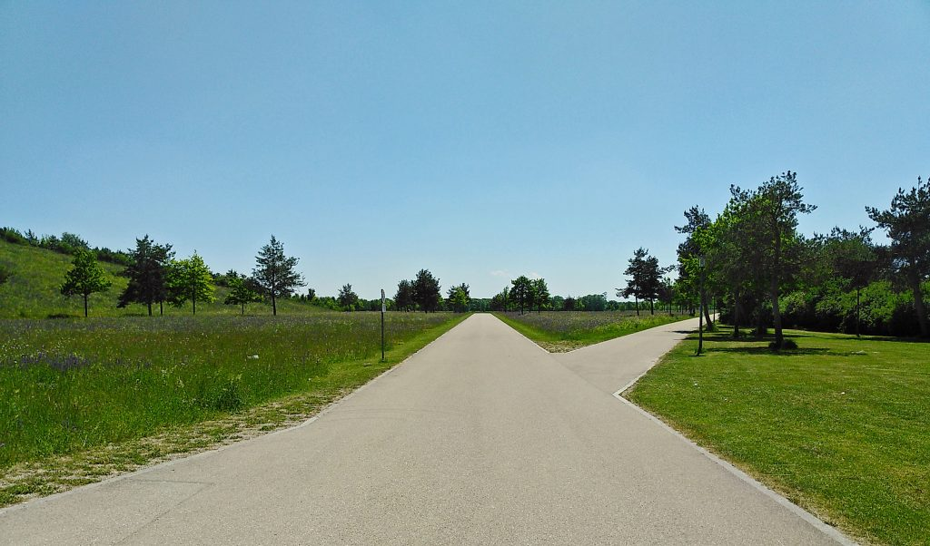 Zugang zum See - Gerade Wege - in Riem