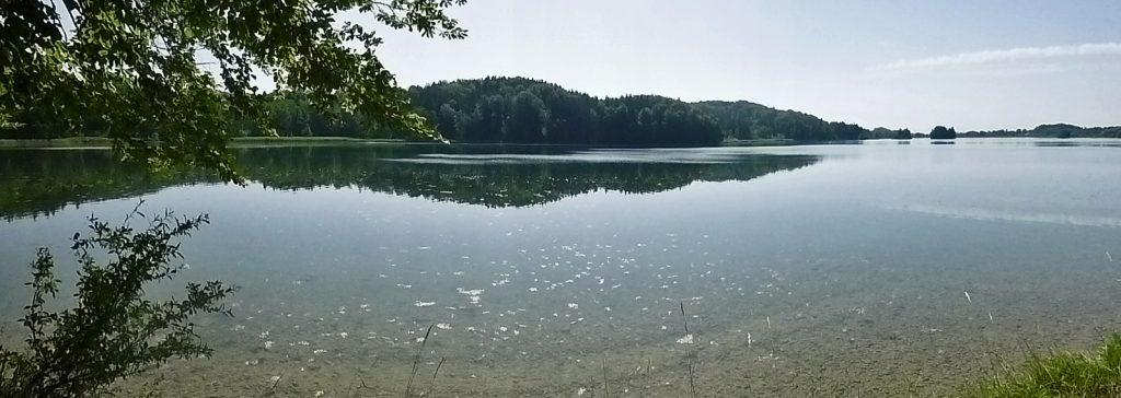 Der Seehamer See - ein Lost Place?