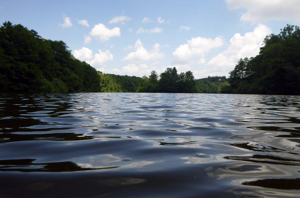 Moorwasser