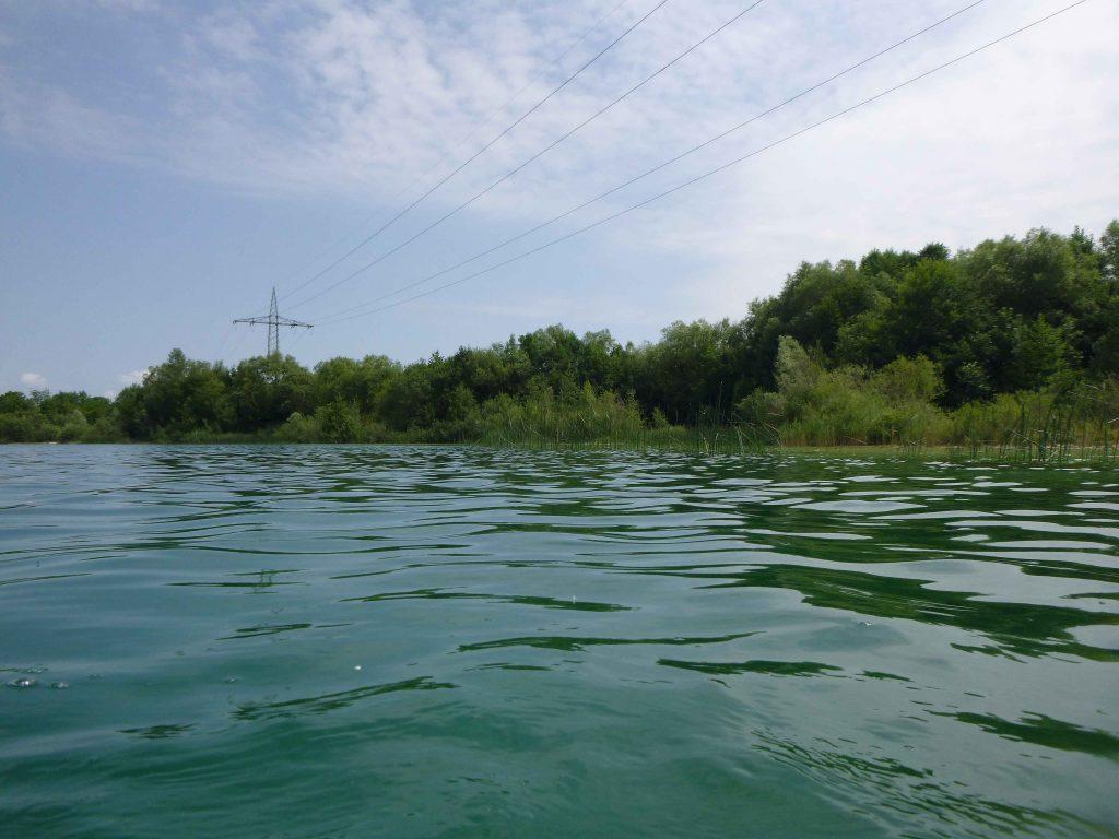 Bewachsenes Ufer im Süden - Lußsee