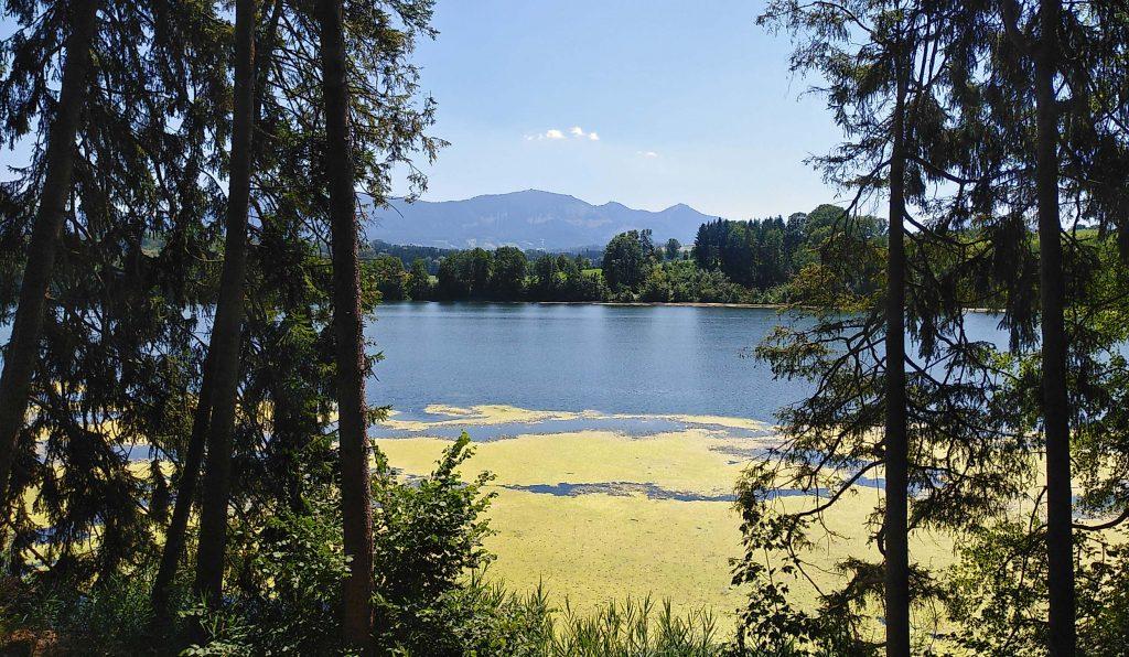 Tinninger See - im Hintergrund die Berge