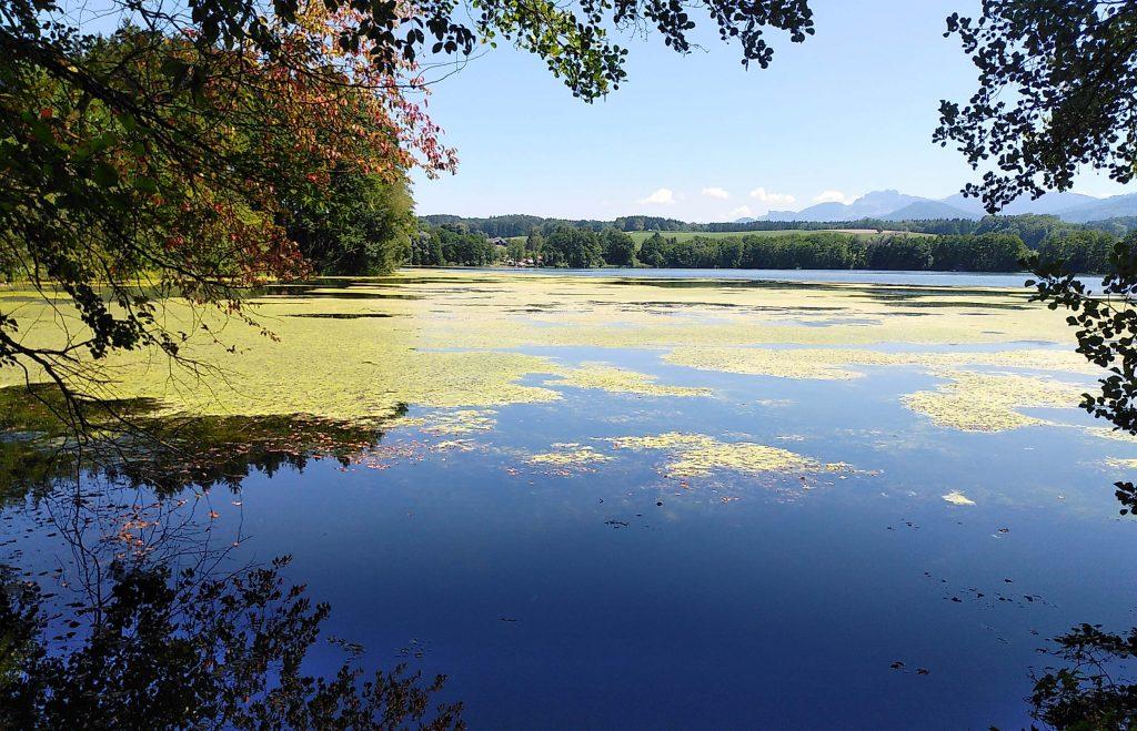 Tinninger See von West nach Ost