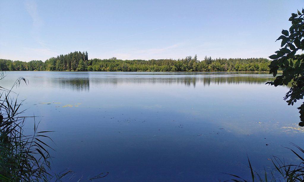 Verführerisches Blau im See