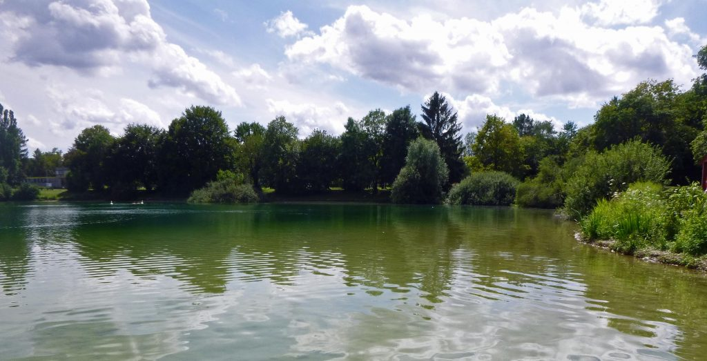 Ufer am Fasaneriesee