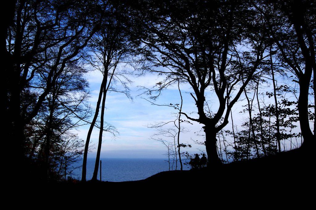 Romantik: Paar auf einer Bank zwischen den Bäumen mit Blick aufs Meer